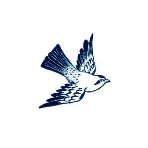 Cartolina Bird