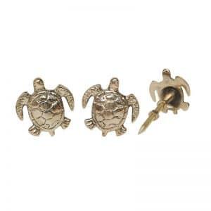 Schildkröte Tommy