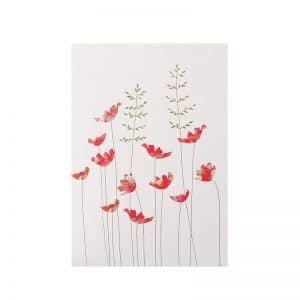 Anemones & Grass