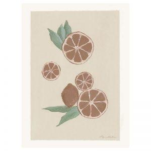 Kunstposter einer handgezeichneten Grapefruit